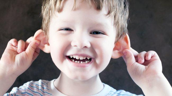 Hörseln – även öronen gillar mat